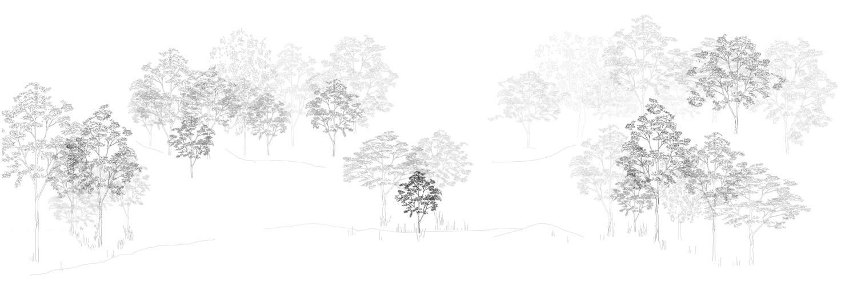 Bauplan Raumversuch Nummer 6 Annekatrin Doell Schnitt 4 Ausgang Parklandschaft